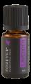 Essential Oil Lavender æterisk olie Forever